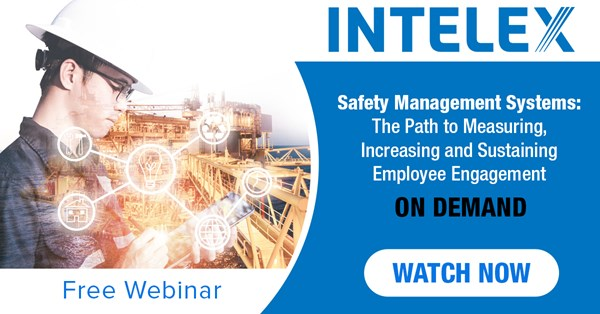 Image for Safety Management Systems: The Path to Measuring, Increasing and Sustaining Employee Engagement