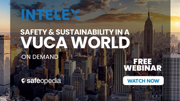 Image for Safety & Sustainability in a VUCA World