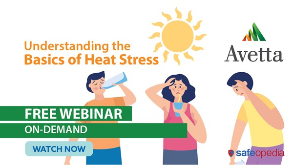 Image for Understanding the Basics of Heat Stress