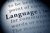 5 Steps to Creating a Culturally and Linguistically Diverse Workplace