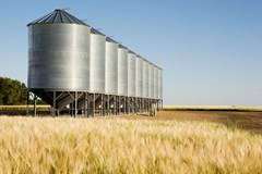 How to Keep Agricultural Workers Safe from Common Grain Bin Hazards