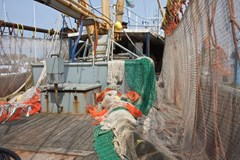 The Commercial Fishing Industry: Don't Throw Safety Overboard