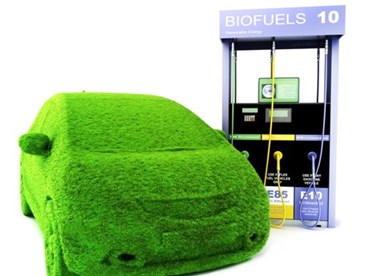 Alternative Fuels as a Control Strategy for Motor Vehicular Air Pollutants
