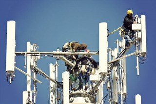 What are some basic fall protection rules that each of my workers need to understand?
