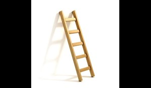 Image for Fixed Ladder Safety