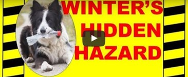 Winter's Hidden Hazard