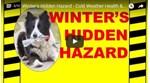 Winter's Hidden Hazard