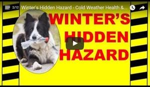 Image for Winter's Hidden Hazard