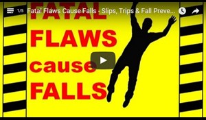 Image for Fatal Flaws Cause Falls - Slips, Trips & Fall Prevention