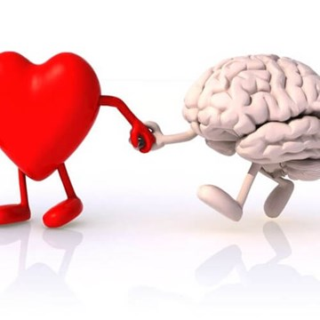 Dear Body, It's Me, Brain