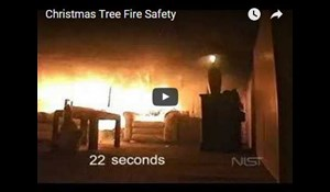 Image for Christmas Tree Fire Safety