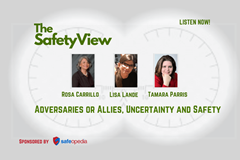 The Safety View: Adversaries or Allies, Uncertainty and Safety