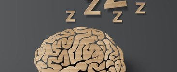 Sleep Deprivation and Worker Safety