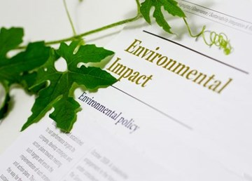Reducing Your Carbon Footprint at Work