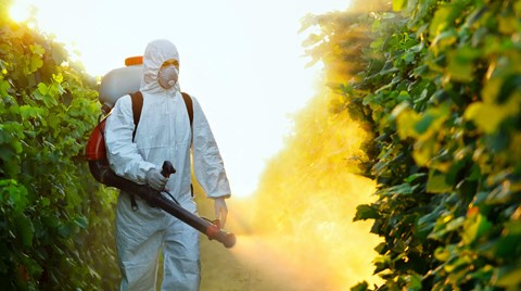 Pesticides are a fact of life for agricultural workers. Find out what what kind of PPE they need to stay safe.