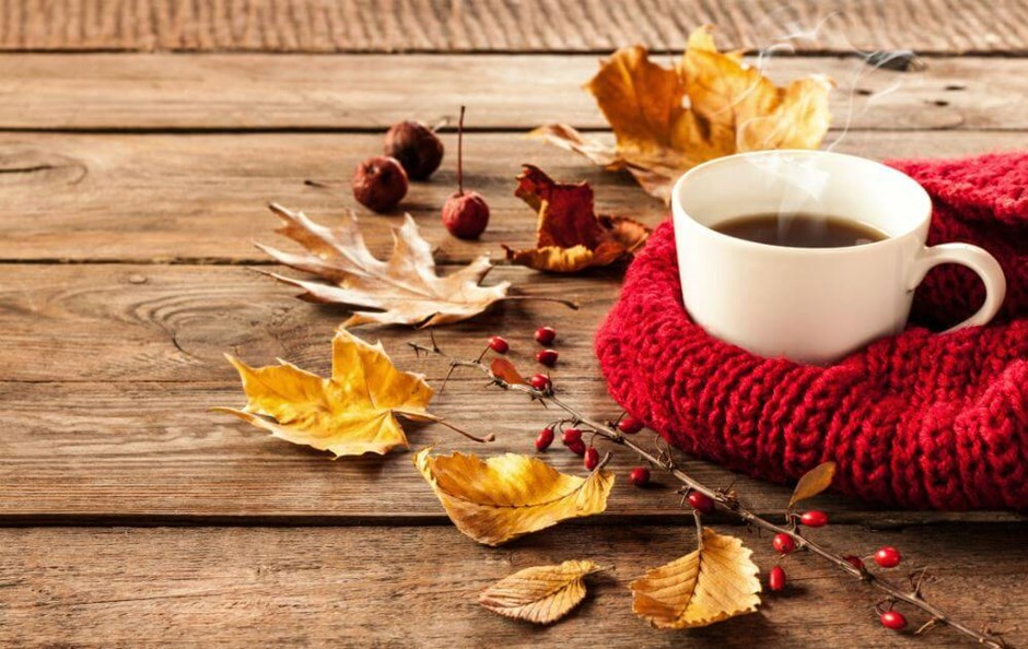 Fall into Safe Energy, Heating, and Weather Preparedness Habits