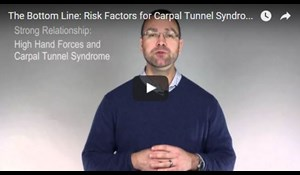 Image for The Bottom Line: Risk Factors for Carpal Tunnel Syndrome