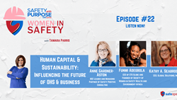 WIS #22: Human Capital & Sustainability: Influencing the Future of OHS