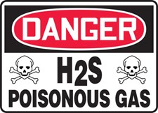 The Ultimate Guide to H2S
