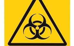 Managing the Risk of Infectious Diseases in the Workplace