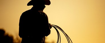 Do you have a lone safety ranger in your company?