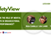 Safety View:  Role of Mental Health in Organizational Performance