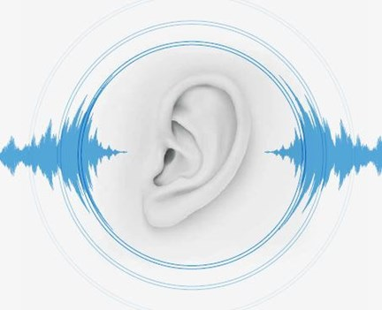 Causes, Consequences, and Costs of Occupational Hearing Loss
