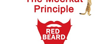 Red Beard Safety Video - The Meerkat Principle