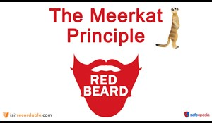 Image for Red Beard Safety Video - The Meerkat Principle