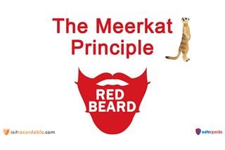 Red Beard Safety Video - The Meerkat Principle