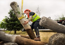 Tradeswoman in construction removing road pylons