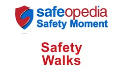 Safety Moment Video - Safety Walks