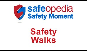 Image for Safety Moment Video - Safety Walks