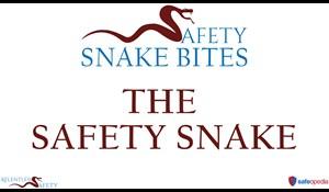 Image for Safety Snake Bites Video - The Safety Snake
