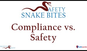 Image for Safety Snake Bites Video - Compliance vs. Safety