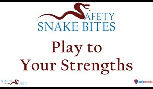 Image for Safety Snake Bites Video - Play to Your Strengths