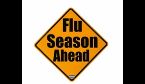 Image for Minimize Chances of Getting the Flu