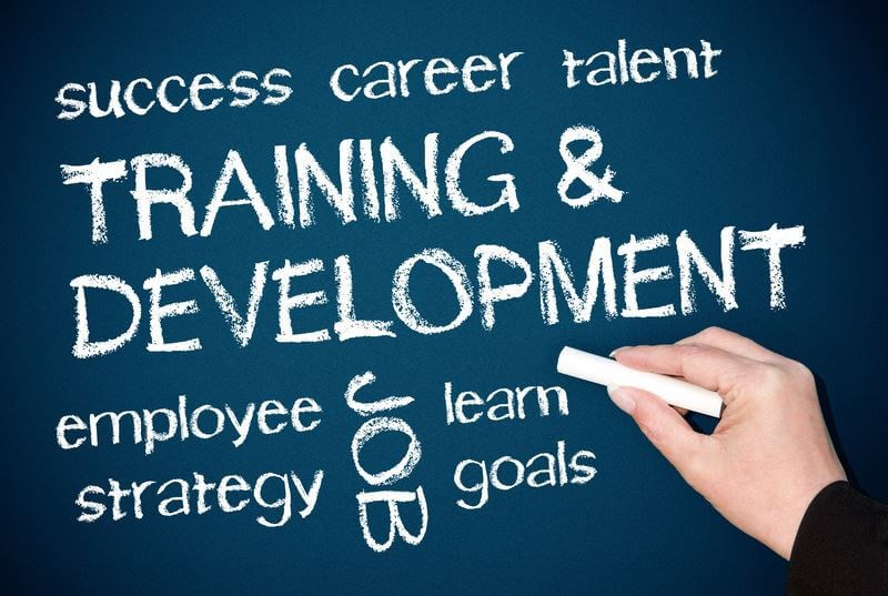 Invest in Employee Training
