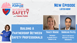 WIS #16 - Building A Partnership Between Safety Professionals